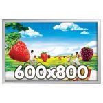 Maxi Frame 600x800