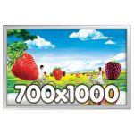 Maxi Frame 700x1000